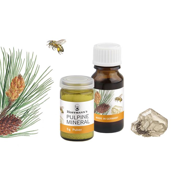 Pulpine-Mineral-hoffmann-dental-material-manufaktur-product