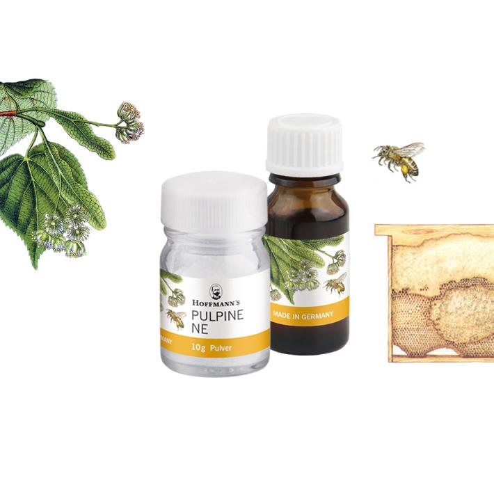 Pulpine-NE-Biene-hoffmann-dental-material-manufaktur-product